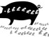 pig-cash-flow-export