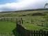 Scotland-135981-Carron