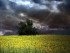 storm brewing in Bulgaria by Tourbillon