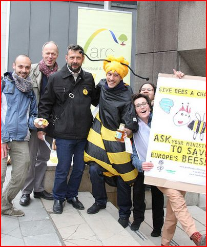 ARC2020 campaigning for bees 2013