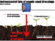 Environmental fate of neonic seed dressings: Goulson-p7