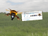 Gas-mask-bumblebee-crop-tweet