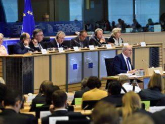 Phil Hogan at EP Agri Committee