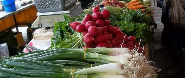 Green Onions simply romanesco