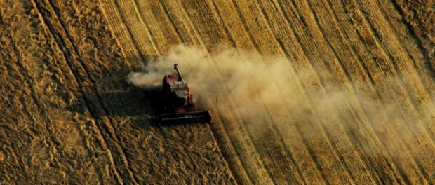 Photo (c) Dr. Peter Lengyel. Industrial farming landscape in Dobrogea region, Romania.