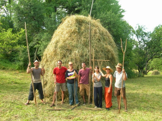WWOOF Romania Host Farm - Provision
