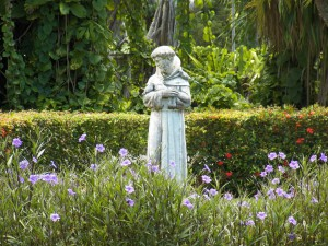 """""""wait for me while I go to preach to my sisters the birds"""" St. Francis of Assisi patron saint of ecology"""