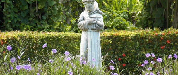 """wait for me while I go to preach to my sisters the birds"" St. Francis of Assisi patron saint of ecology"