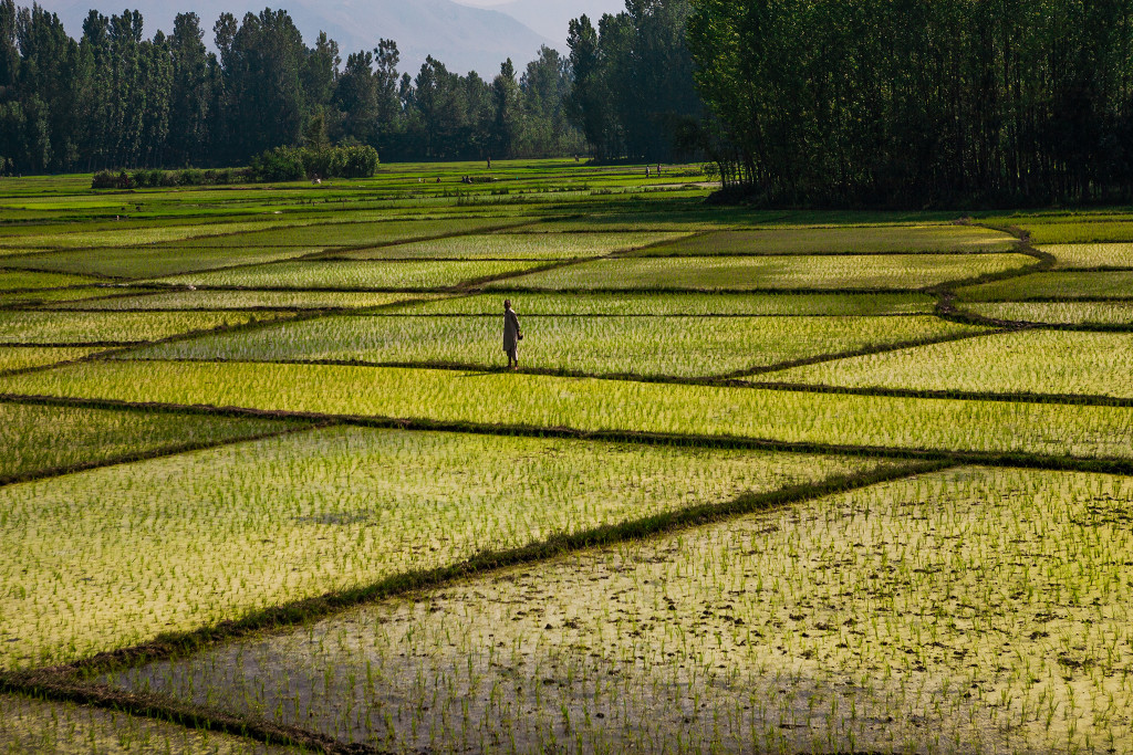 "photo by Sandeep Achetan ""Train journey from Srinagar to Anantnag, Kashmir, India"" CC BY-NC-ND 2.0"