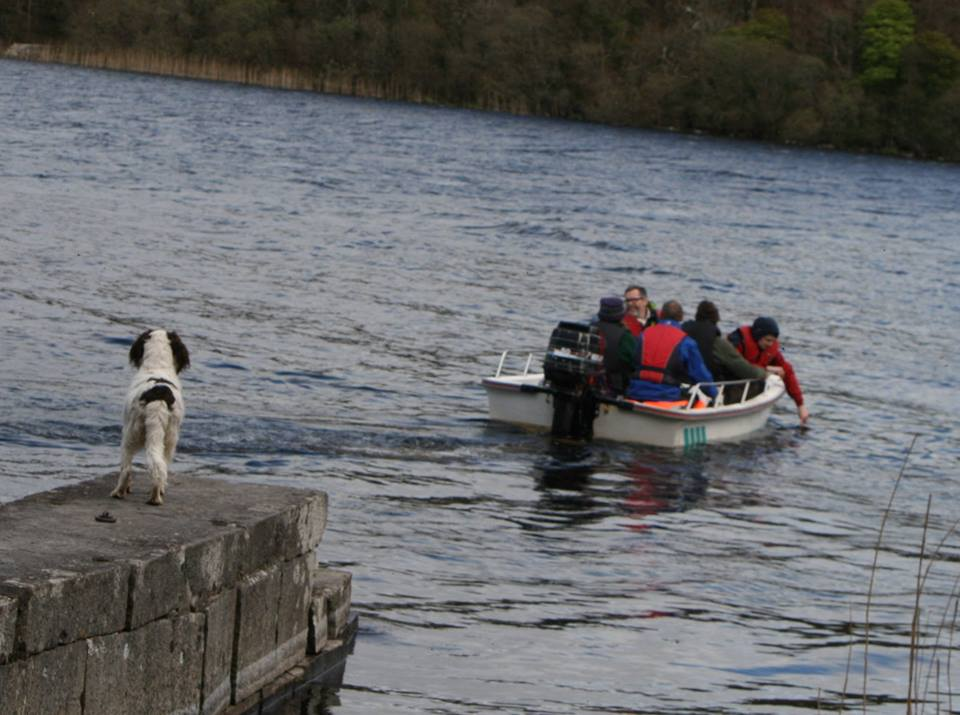 photo (c) john wilmott eaters on route to lough key