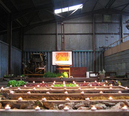 Taste the Farm (c) Touchstone