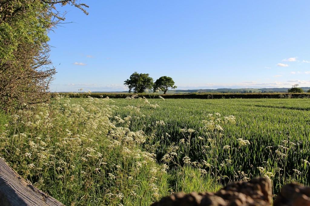 english-countryside-1591416_1280