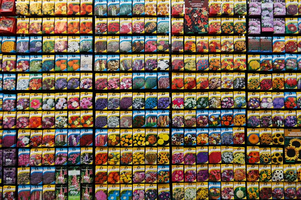 seeds-supermarket