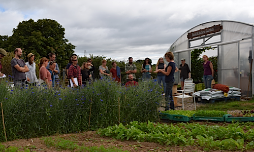 Future Growers Scheme at Riverford Wash Farm, Devon. Picture: Soil Association.