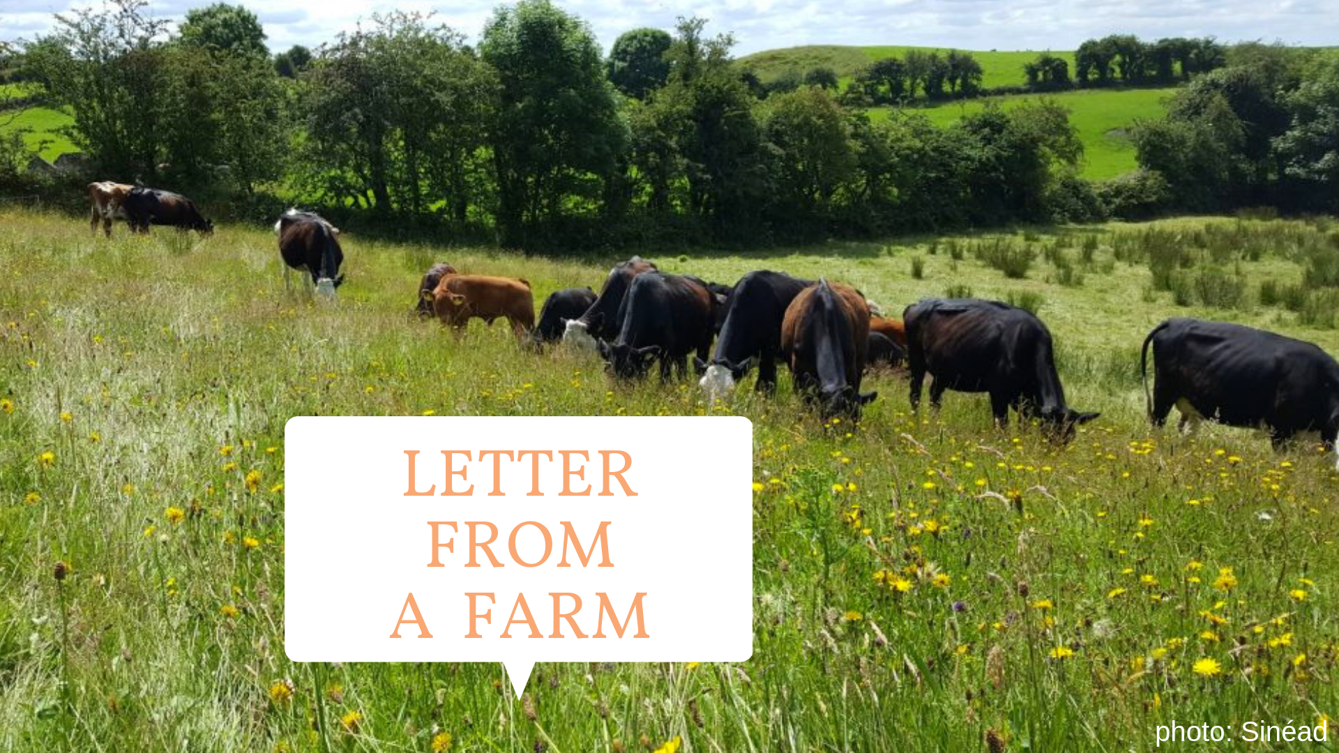 letter from a farm slider