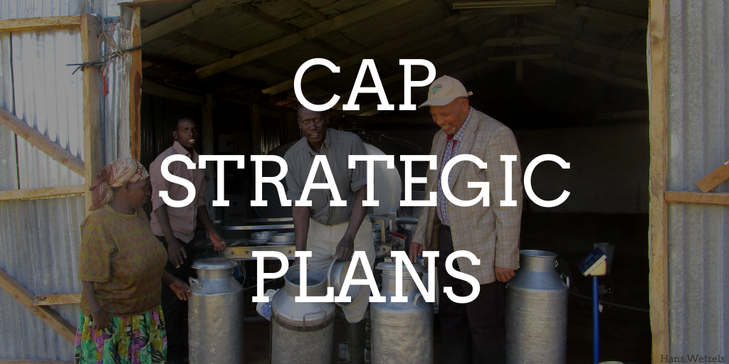 CAP Strategic Plans