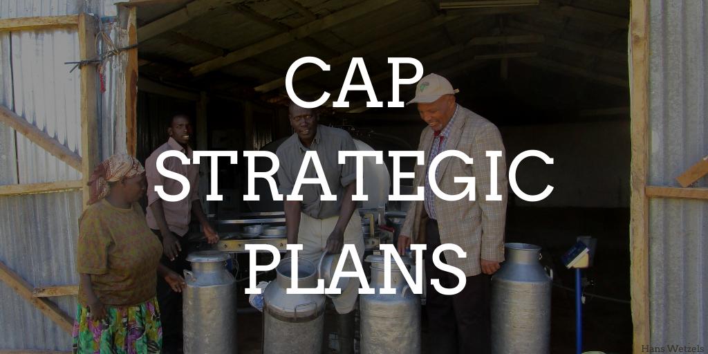 CAP Strategic Plans