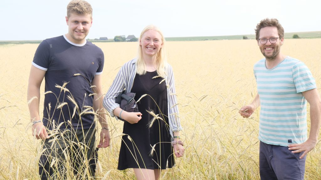 Young farmers couple Jan Gonne and Pauline with Schleswig Holstein Minister for Agriculture Jan Philipp Albrecht, catching the rye
