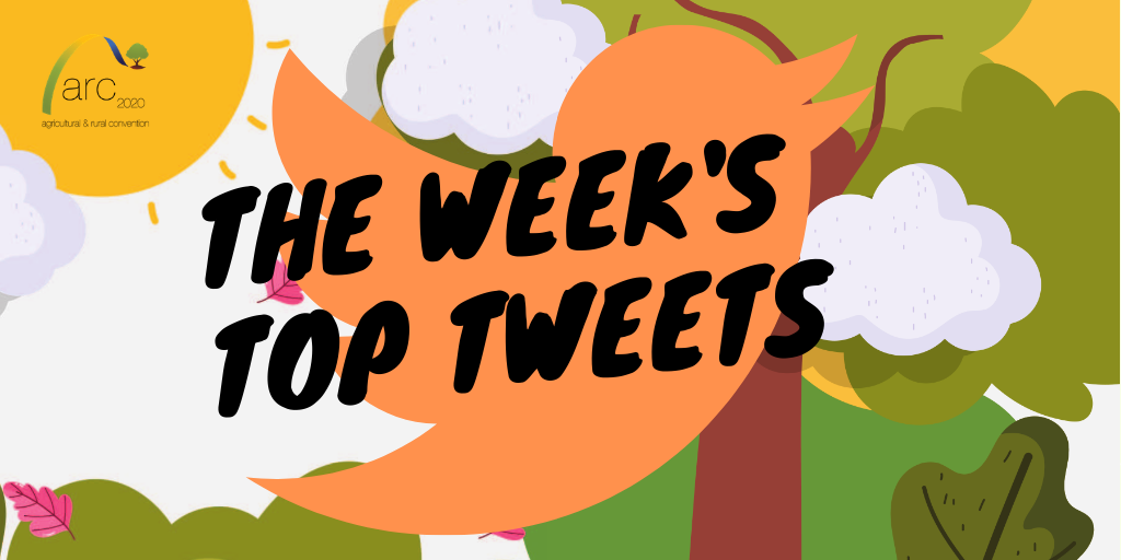 week's top tweets tw 31