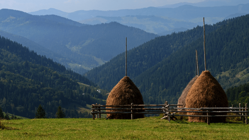 Farm in the Carpathian mountains