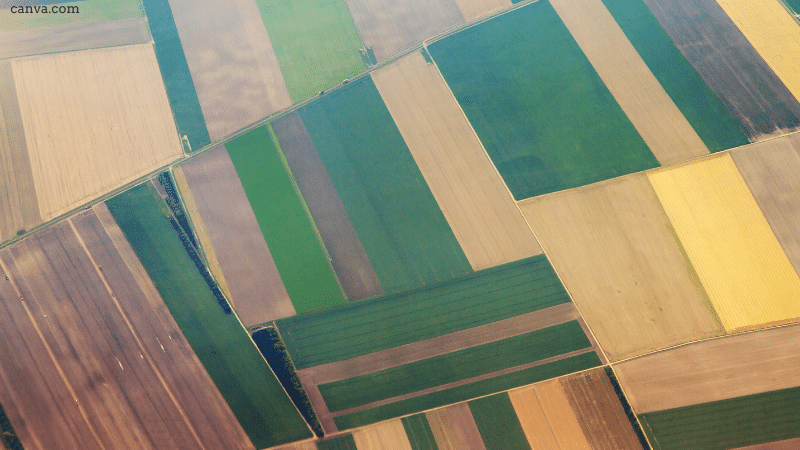 Aerial view of agriculture fields in the Netherlands